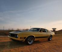 Ford Mustang Mach I Fastback 1972  Coupé V8 302ci